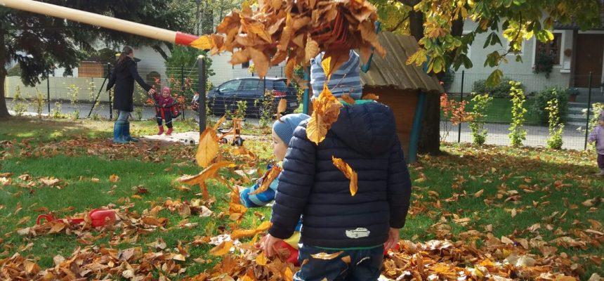 Was der Herbst so bringt